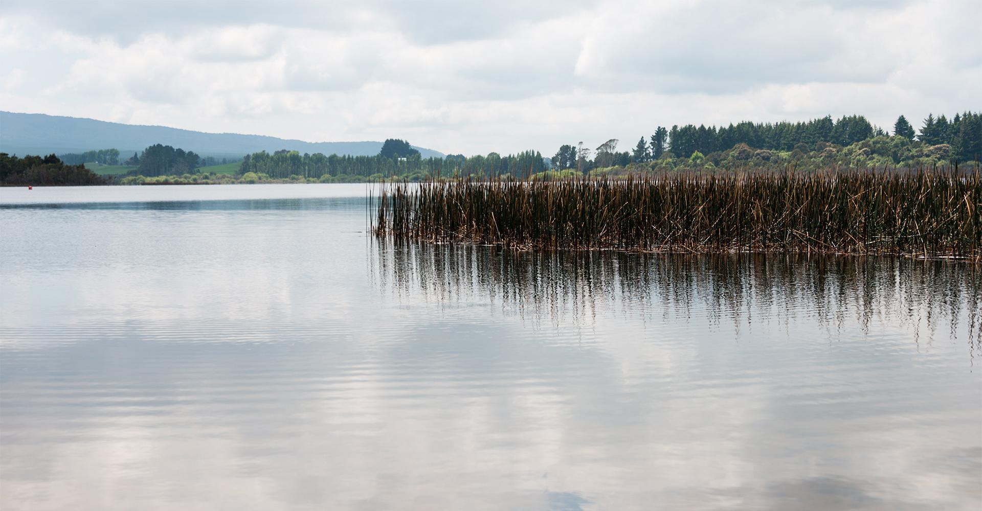 Lake Rotomahana