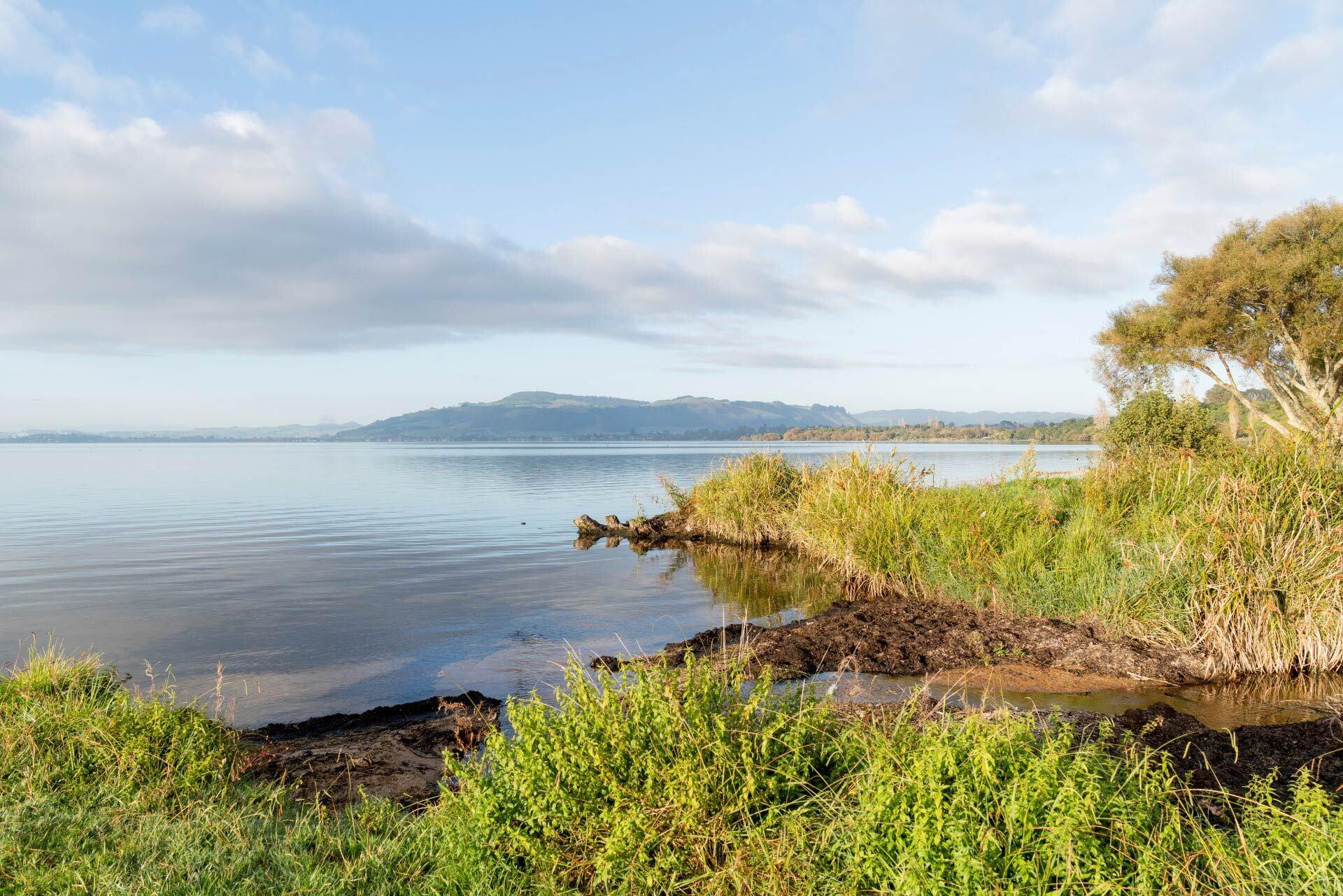 Lake Okareka update