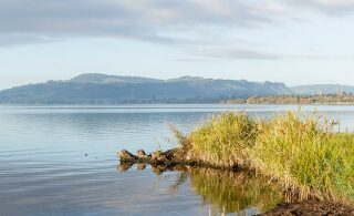 Council fund helps Rotorua farmers spread the word