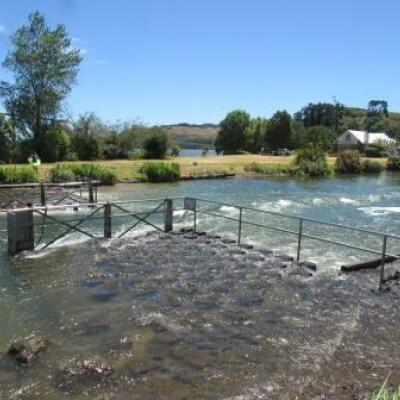 Rain needed for Rotorua lakes