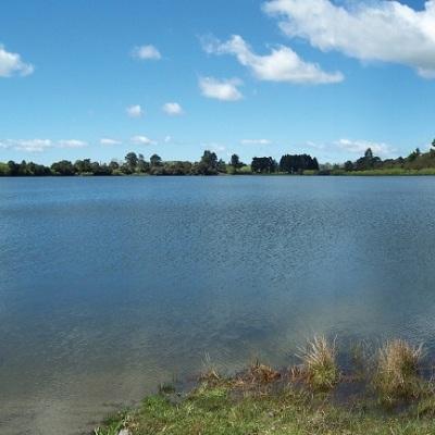 Health warning issued for Lake Ōkaro