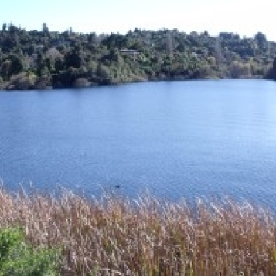 Next step towards improving water quality in Lake Rotorua