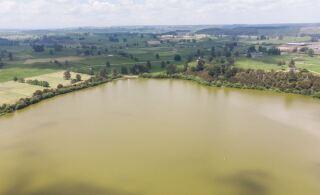 Health Warnings Issued for Lake Okaro and Lake Rotoehu