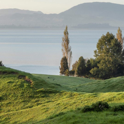 Lake Rotorua science review completed