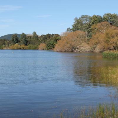 Health warning for Lake Okaro lifted